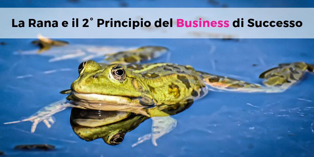 La Rana e il 2° Principio del Business di Successo